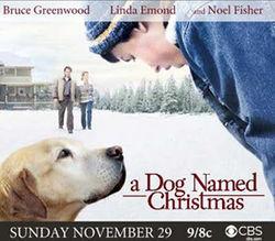 Kerstfilms Dog