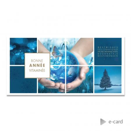 E-card a healthy new year - Franstalige versie